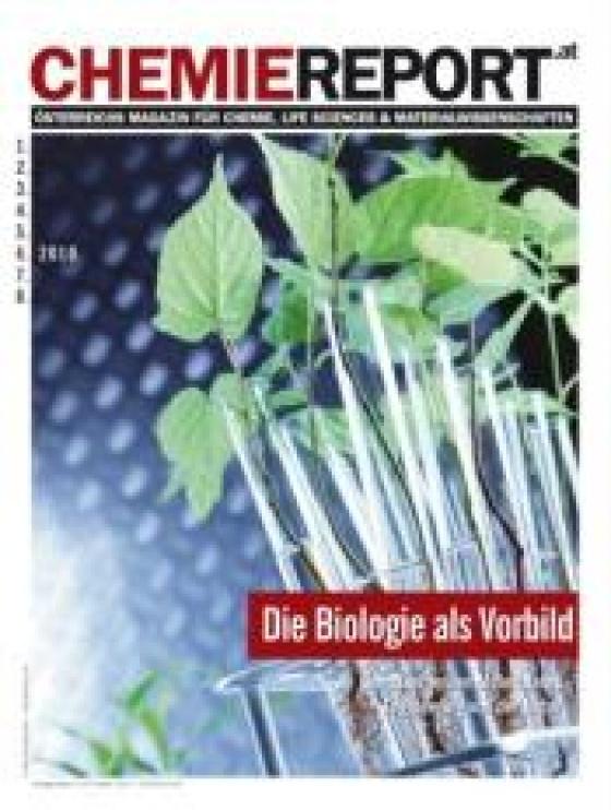 Chemiereport 2010/06