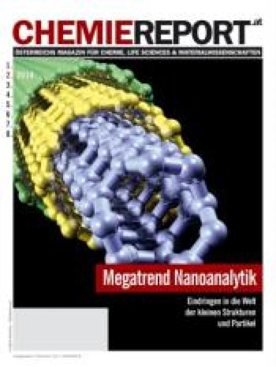 Chemiereport 2010/02